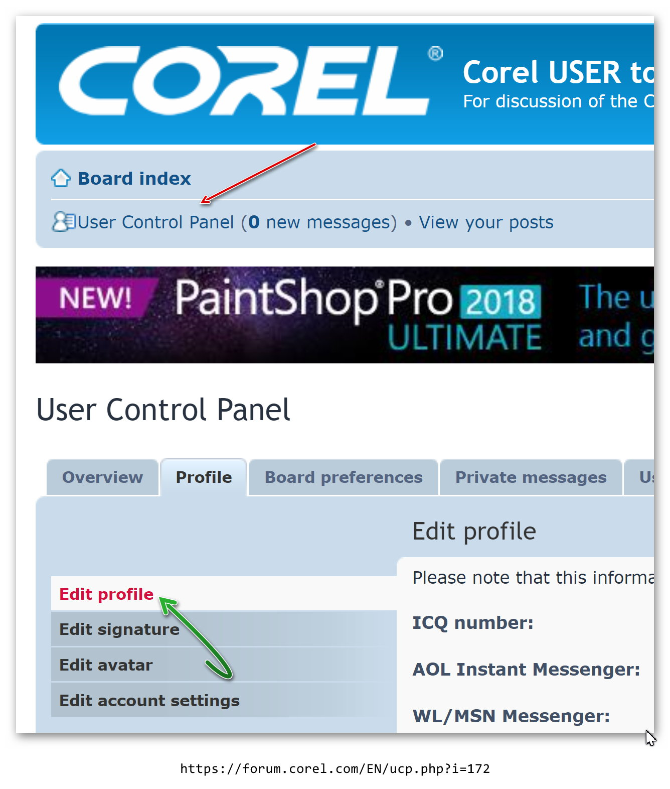 Corel Profile01.jpg