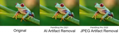 frogs-artifact-removal-psp-2020-2021-comparison.png